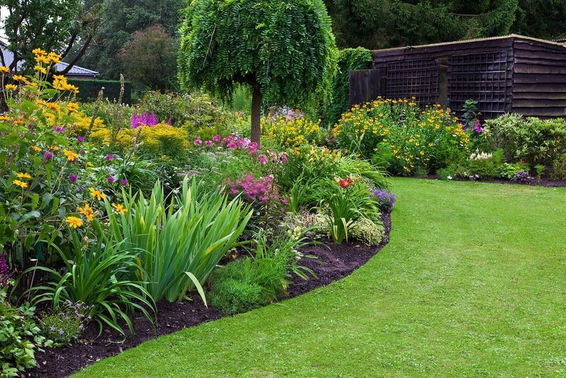 Garden Restoration Services In Linley Point