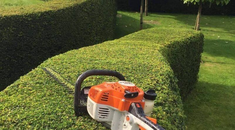 Hedge Trimming Northern Suburbs