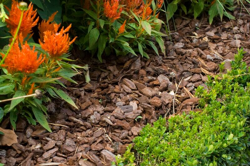 Garden Mulching Services In Linley Point