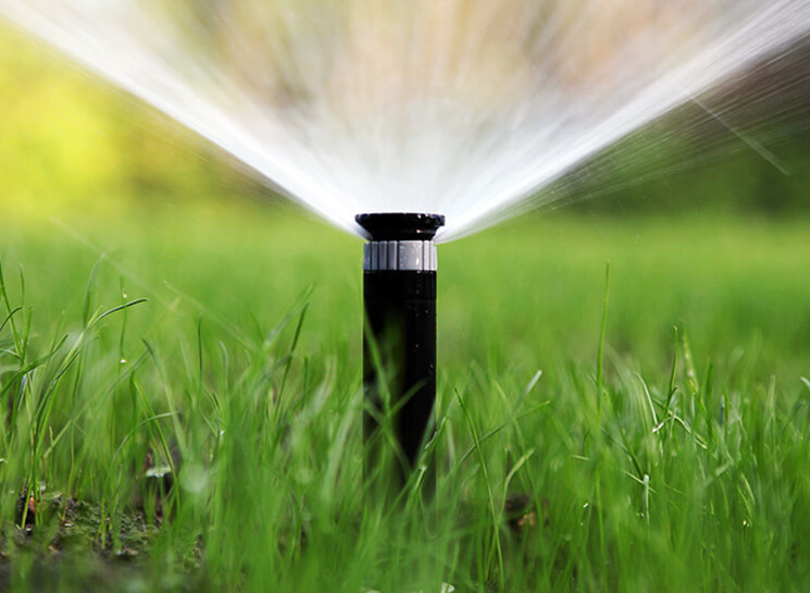 Sydney Watering Systems