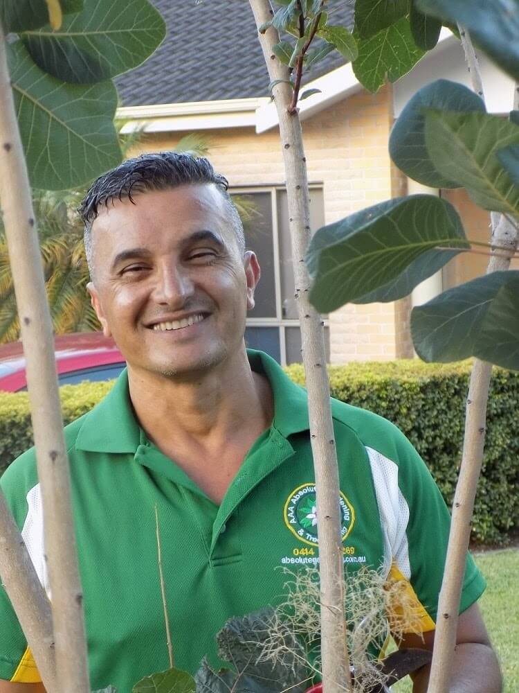 David - Absolute Tree & Garden Services